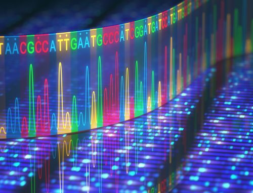 La scienza da aspettare nei prossimi dodici mesi