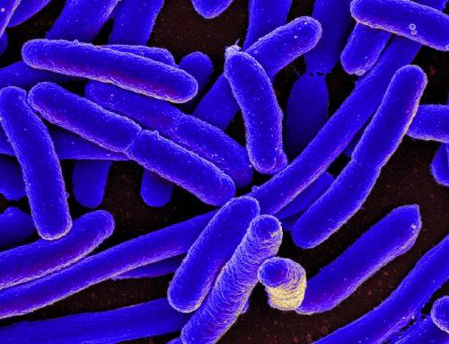 Resistenza agli antibiotici, in Italia 450.000 morti entro il 2050