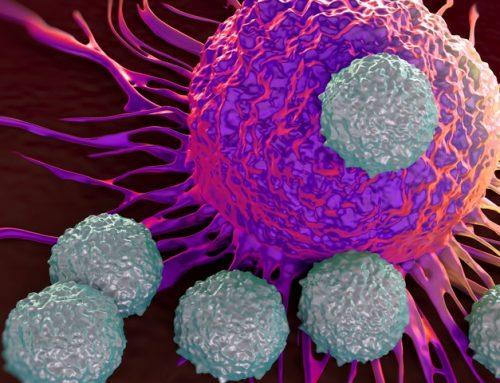 """È una proteina a """"nutrire"""" i tumori: la scoperta è tutta italiana"""