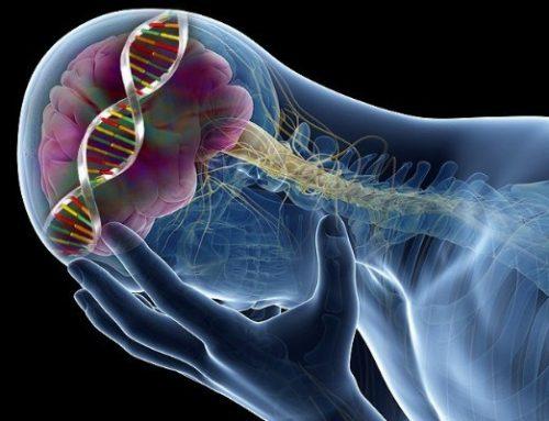 Non avevamo capito nulla della genetica della depressione