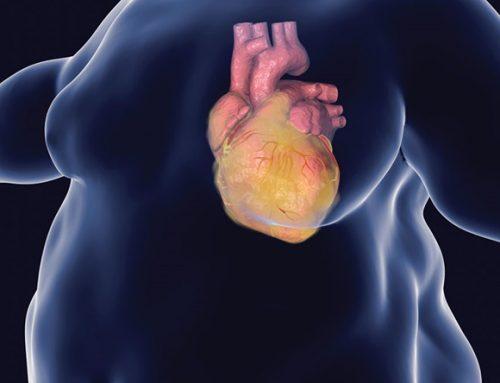 Il grasso del cuore ha un nuovo nemico