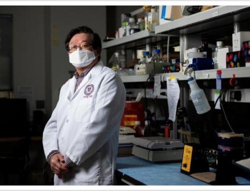 """Nuovo vaccino contro COVID 19 che usa """"approccio insolito"""" sviluppato da scienziati americani"""