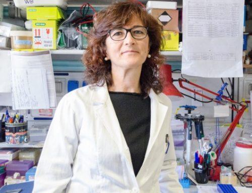 San Raffaele Milano, nuovo approccio per combattere leucemie